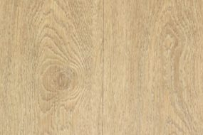 evolution white oak